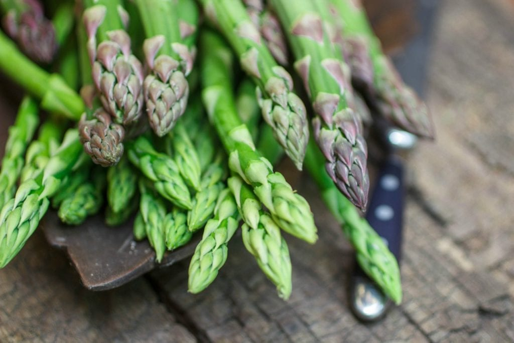Elder Care in Bala Cynwyd PA: National Asparagus Month