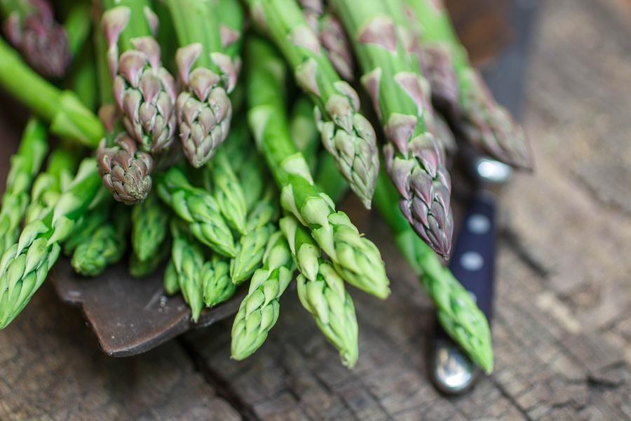 Elder Care in Bala Cynwyd PA: National Asparagus Month