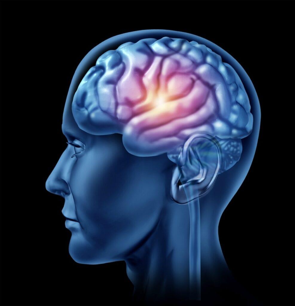 Senior Care in Glenolden PA: Senior Brain Health