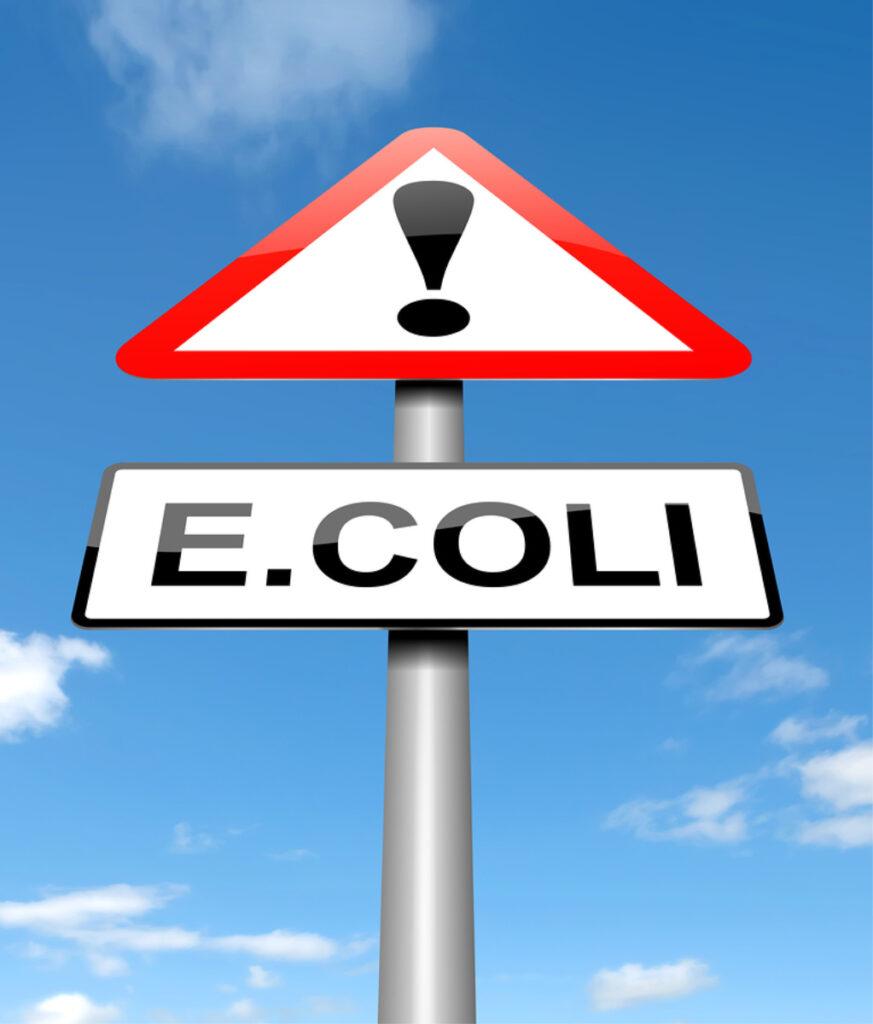 Elder Care in Glenolden PA: Avoid E. Coli Infection
