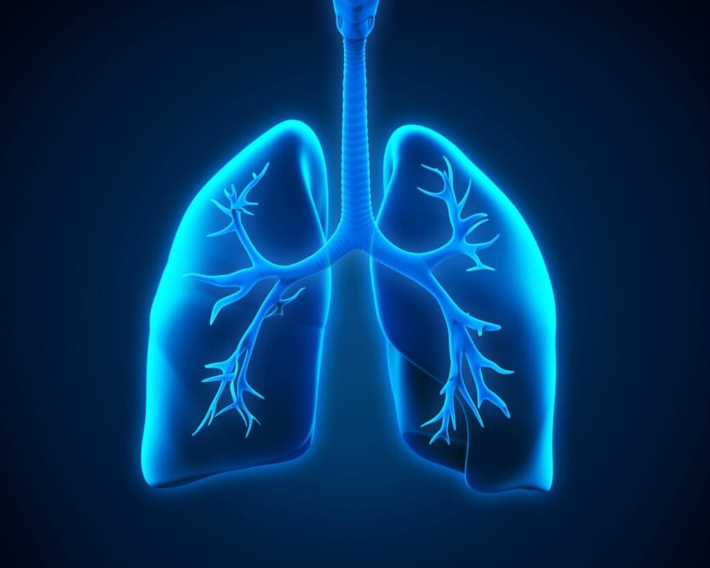 Home Care Services in Haverford PA: Learning More About Pneumonia
